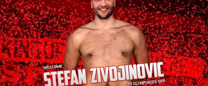 Ζιβογίνοβιτς